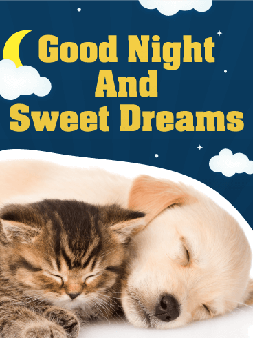 Superb Sweet Dreams   Good Night Wish Card