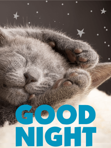 Sleeping Kitty Good Night Wish Card