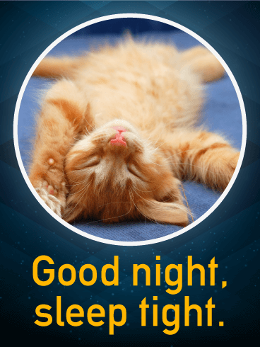 sleep tight good night wish card