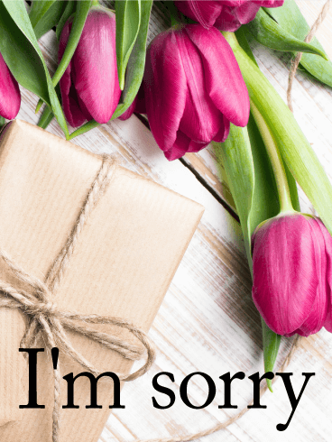 Flowers for an apology im sorry card birthday greeting cards flowers for an apology im sorry card m4hsunfo