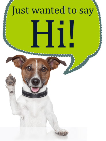Saying Hi - Animal Greeting Card