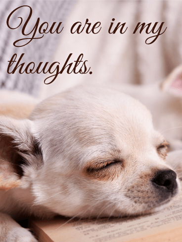 You are in My Thoughts - Thinking of You Card