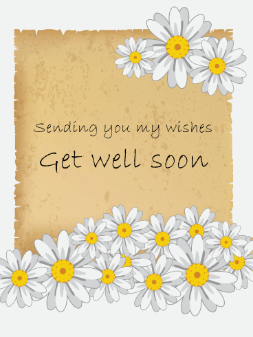 White Daisy Flower Get Well Card