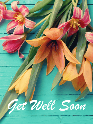 Colorful Flower Get Well Card