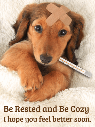 Be Rested and Be Cozy - Get Well Card