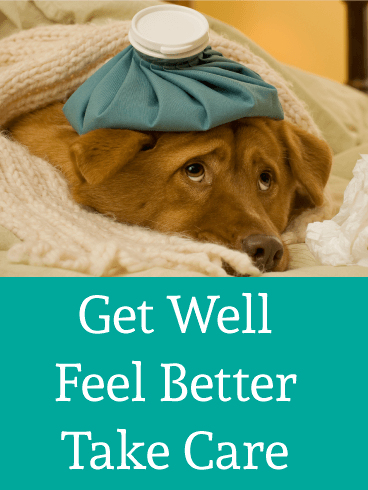 Feel Better - Get Well Card