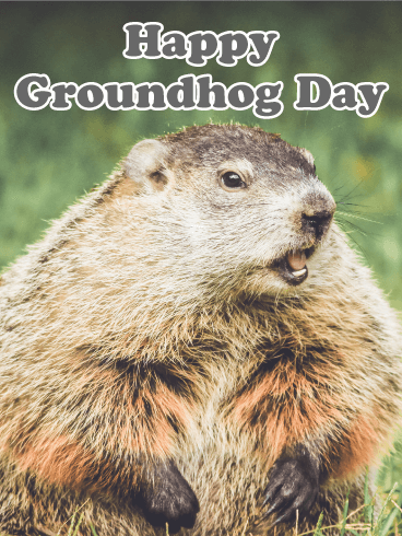 Let's Hope for Spring! Groundhog Day Card