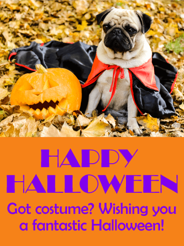 Pug Happy Halloween Card
