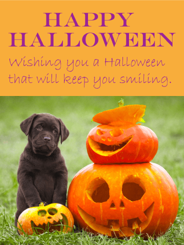 Big Smiles Happy Halloween Card Birthday Greeting Cards By Davia