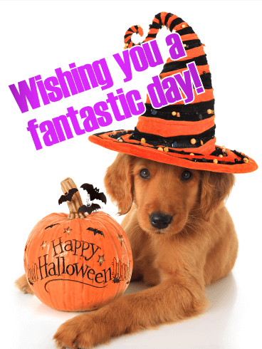 Have a Fantastic Day! Happy Halloween Card