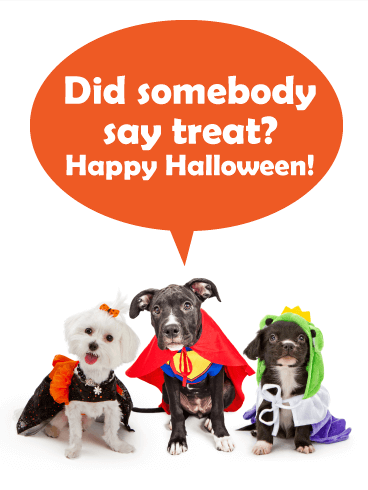 Somebody Say Treat? Funny Halloween Card