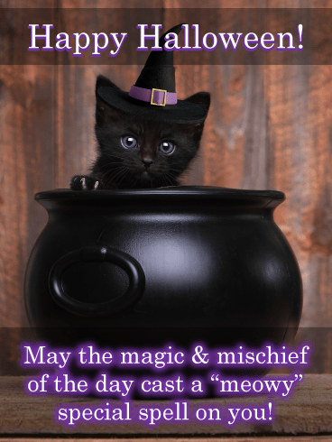 Kitty Cauldron – Happy Halloween Card