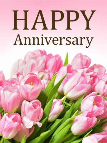 Pink Rose Happy Anniversary Card