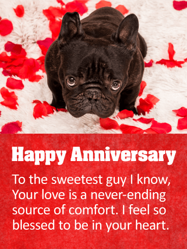 To the Sweetest Guy - Happy Anniversary Card