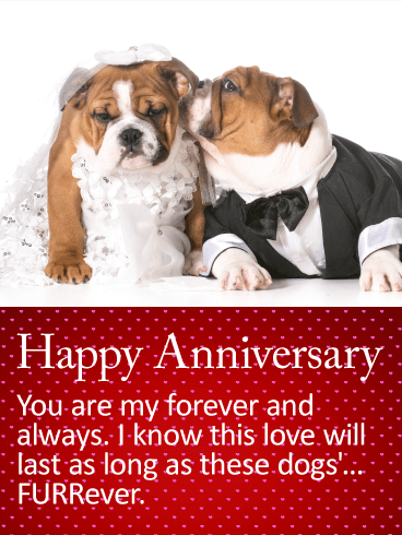 To my Forever & Always - Happy Anniversary Card