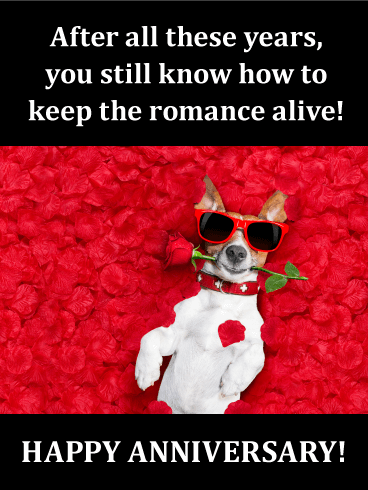 Romantic Doggy Funny Anniversary Card