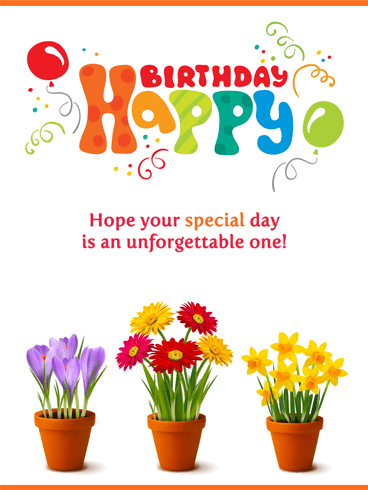 Flowers & Balloons – Happy Birthday Card