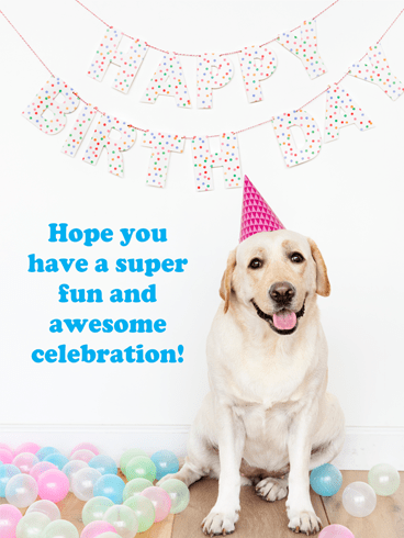 This Dog is Ready to Celebrate – Happy Birthday Card