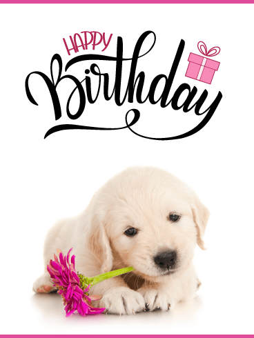 Cute Puppy & Flower – Happy Birthday Card