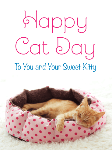 Time for a Nap – Happy Cat Day Card
