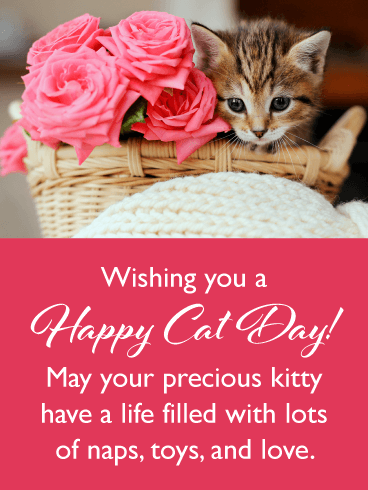 Lots of Love – Happy Cat Day Card