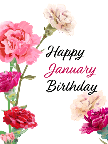 Happy January Birthday Card - Carnation