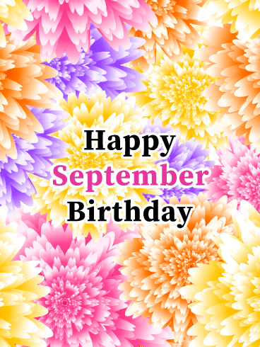 Happy September Birthday Card - Asters