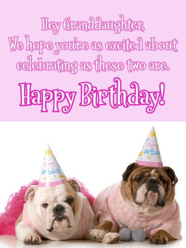 Let's Get Ready to Celebrate - Happy Birthday Cards for Granddaughter