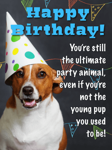 To the Ultimate Party Animal - Funny Birthday Card for Him