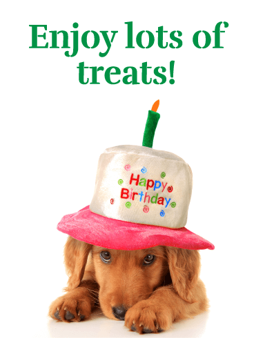 Puppy in a Hat - Happy Birthday Card for Girls