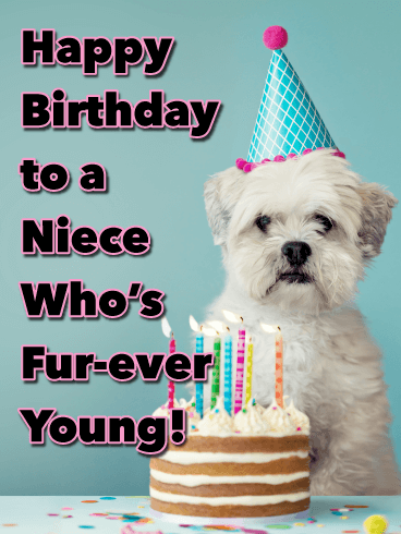 Fur-ever Young! - Happy Birthday Card for Niece