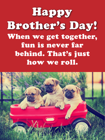 Fun is Never Far Behind -Happy Brother's Day Card