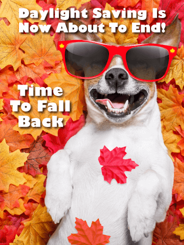 Cute Dog in Leaves – Daylight Saving Ends Card