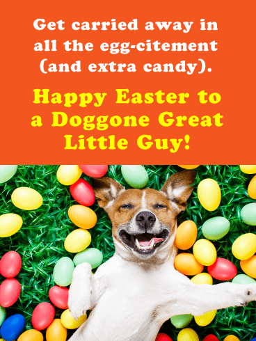 Doggone Great Little Guy-Happy Easter Cards For Boys