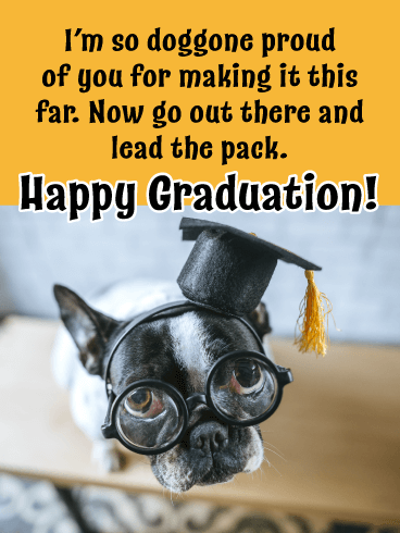 Doggone Proud of You! - Happy Graduation Card for Him