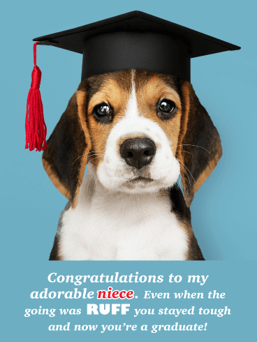 Beagle in Mortar Cap - Funny Graduation Card for Niece