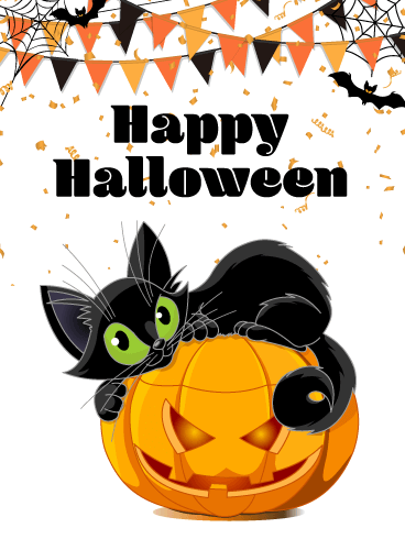 Sweet Black Cat – Happy  Halloween Card
