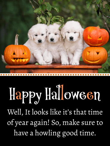 Pumpkins & Puppies – Happy Halloween Card