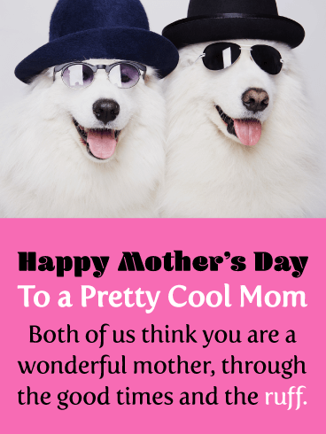 Two Cool Dogs - Happy Mother's Day Card from Both of Us