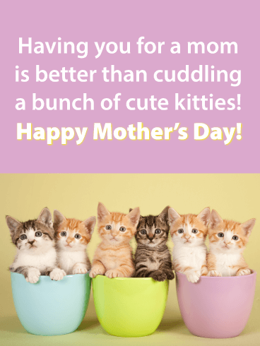 Having you for a mom is better than cuddling a bunch of cute kitties! Happy Mother's Day!