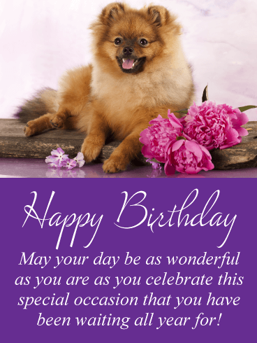A Special Occasion - Happy Birthday Card