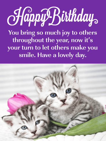 Precious Kittens - Happy Birthday Card
