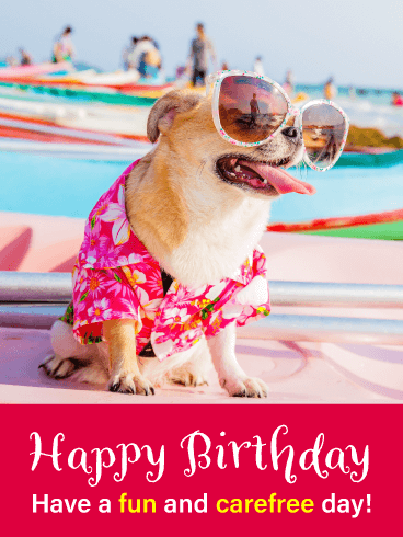 Puppy Wearing Sunglasses - Happy Birthday Card