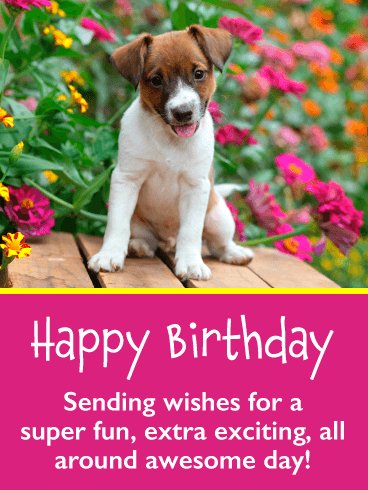 Super Cute Puppy – Happy Birthday Card