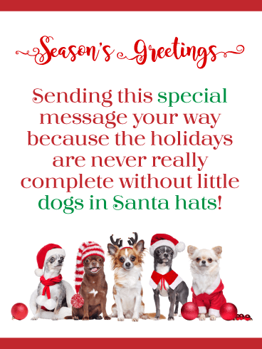 Dogs in Santa Hats! Season's Greetings Card