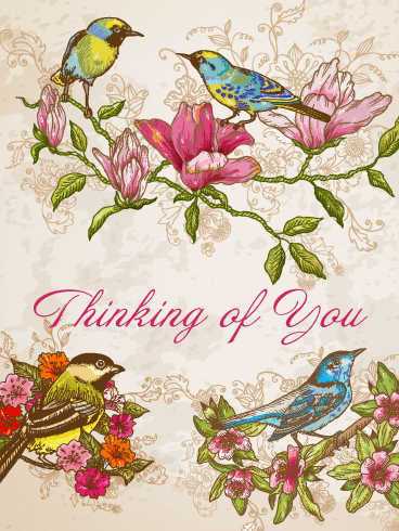 Delightful Birds & Flowers – Thinking of You Cards