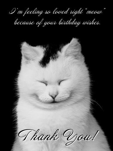 "So Loved Right ""meow"" - Thank You Card for Birthday Wishes"