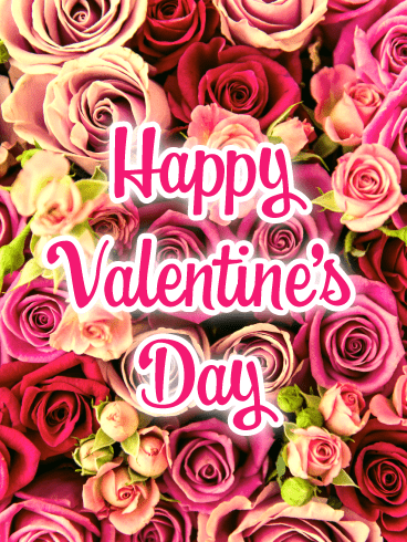 Beautiful Roses - Happy Valentine's Day Card for Everyone