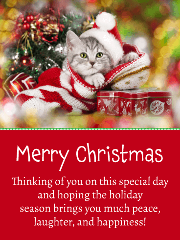 Festive Kitty - Merry Christmas Card for Everyone