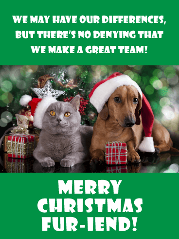 Opposites Attract - Merry Christmas Card for Friends